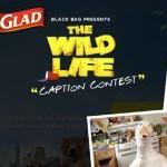 Glad Black Bag's The Wild Life Promotion