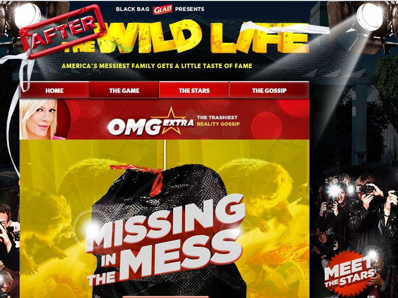 Glad Missing in the Mess Sweepstakes