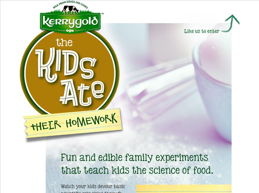 Kerrygold The Kids Ate Their Homework Sweepstakes