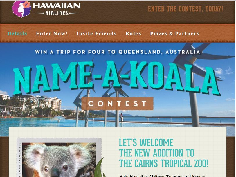 Hawaiian Airlines' Name A Koala Sweepstakes