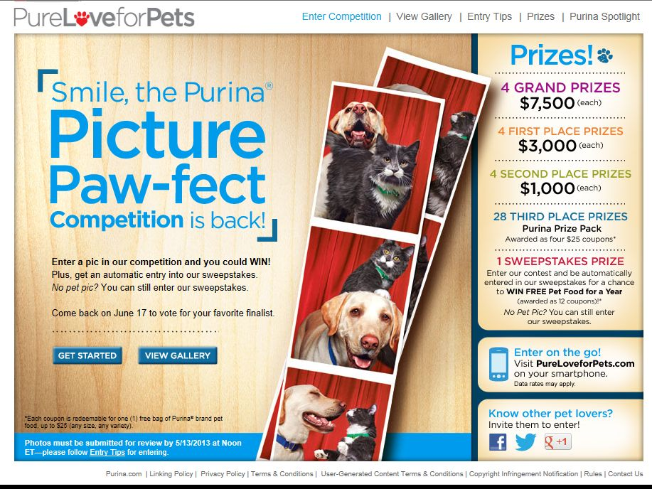 Picture Paw-fect Competition