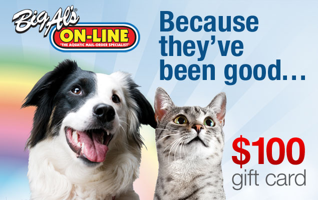 $100 Pet Gift Card Giveaway