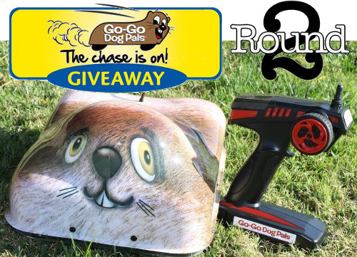 Go-Go Dog Pal Giveaway Round 2