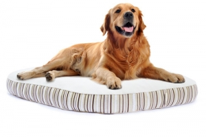 Natural Dog Bed by Essentia