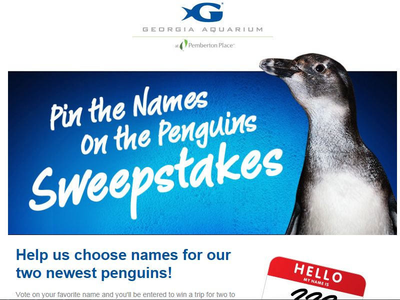 Pin the Names on the Penguins Sweepstakes