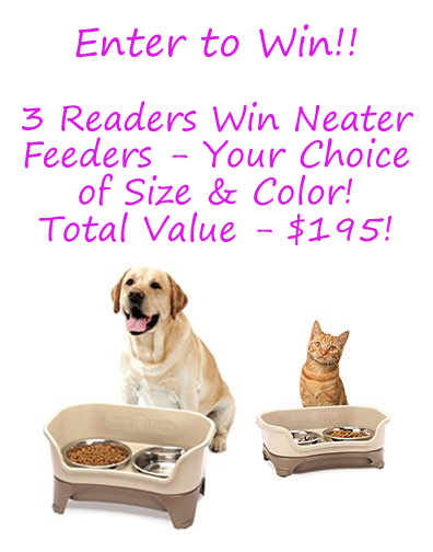 3 Winners get Neater Feeders for Dogs $195 Value (ends 08/28)