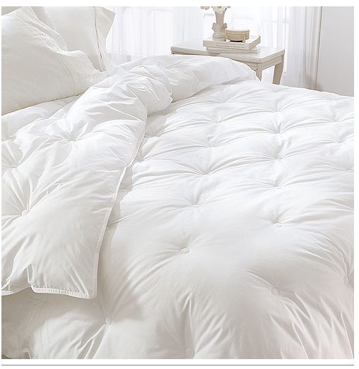 Down Alternative Comforter & Pillow