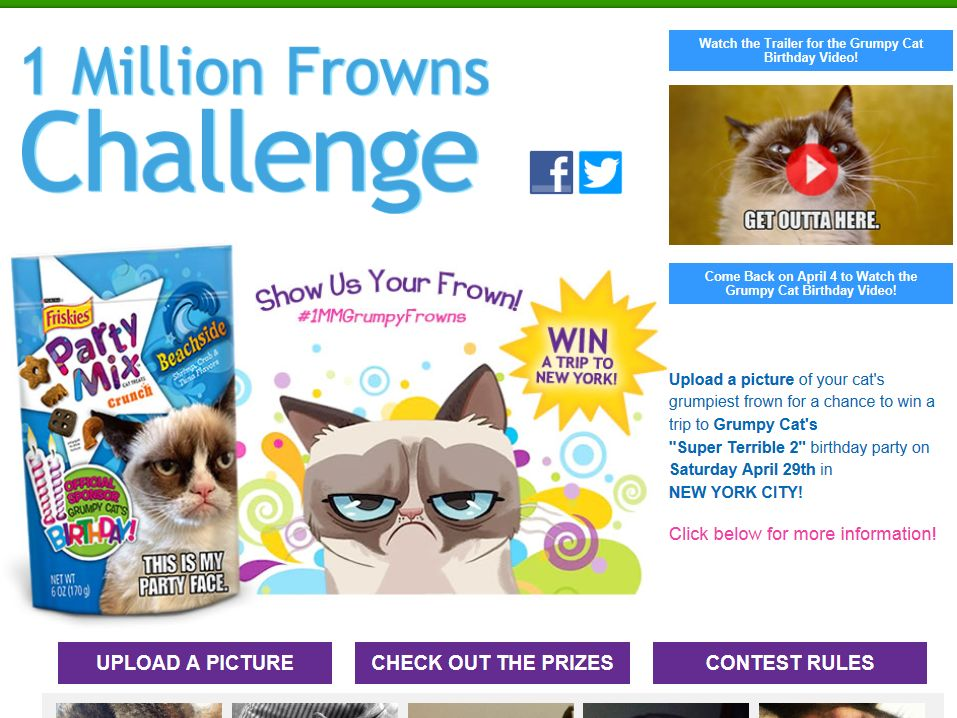 "Purina Friskies ""1 Million Frowns Challenge"" Sweepstakes"