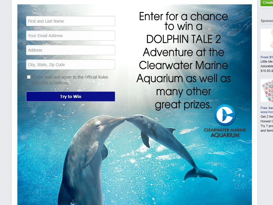 Coffee Beanery's Dolphin Tale 2 Getaway Facebook Sweepstakes