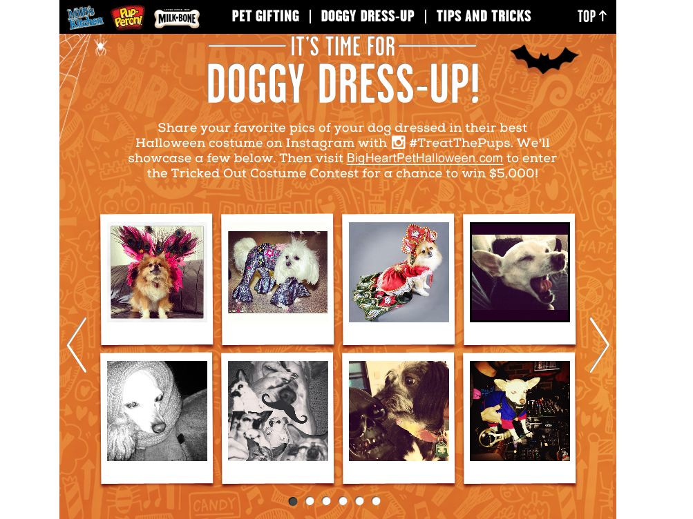 Big Heart Pet Halloween Tricked Out Costume Contest