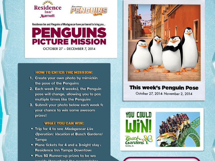 Penguin Picture Mission Sweepstakes