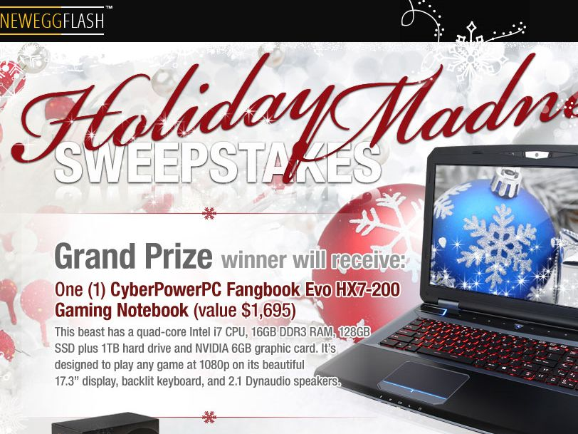 The NeweggFlash Holiday Madness Sweepstakes