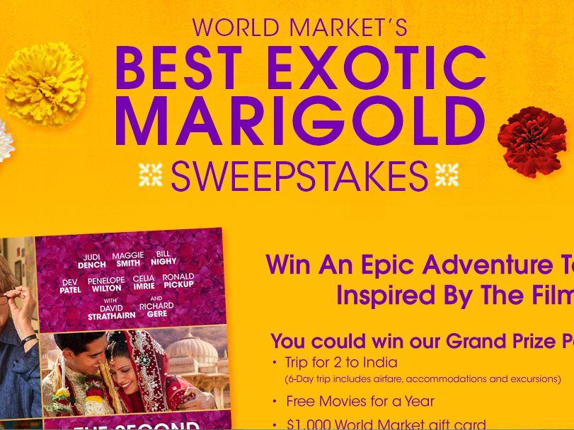 World Market's Best Exotic Marigold Sweepstakes