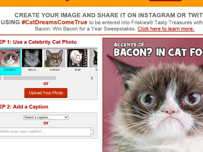 The Purina Friskies Tasty Treasures with Accents of Bacon: Win Bacon for a Year Sweepstakes