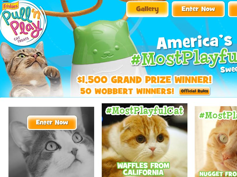 The Purina Friskies Pull 'n Play: America's Most Playful Cat Sweepstakes