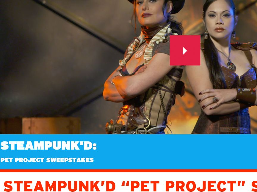 """GSN """"Steampunk'd Pet Project"""" Sweepstakes"""