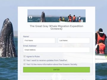 Great Gray Whale Migration Expedition Sweepstakes