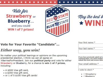 Red State or Blue State Sweepstakes