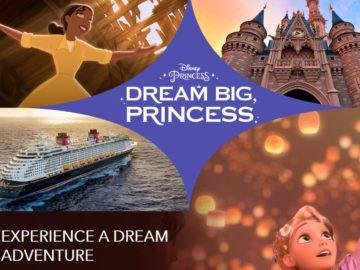 Disney Dream Big Princess Experience Sweepstakes