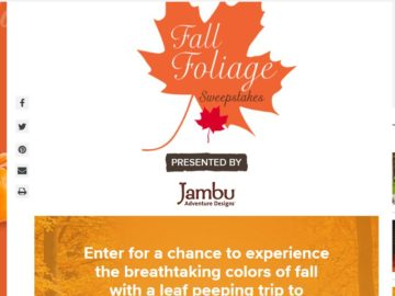 The Hallmark Channel Fall Foliage Sweepstakes