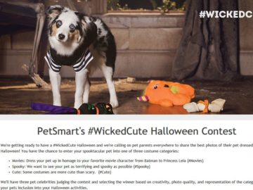 PetSmart Wicked Cute Contest