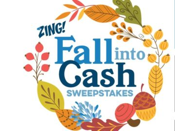 Zing by Quicken Loans Fall into Cash Sweepstakes