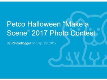 "Petco Halloween ""Make a Scene"" Photo Contest – Instagram"