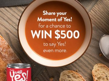 Well Yes Moment Sweepstakes