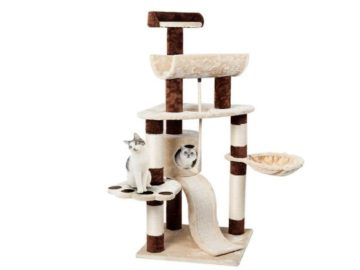 Win a Favorite 57″ Cat Activity Tree Condo
