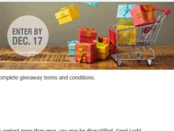 Stoneberry Holiday Shopping Spree Giveaway Sweepstakes