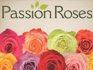 Win a Dozen PassionRoses