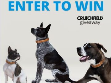 """Crutchfield Pet """"Great Gear Giveaway"""" Sweepstakes"""