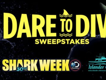 Southwest Airlines Dare to Dive Sweepstakes