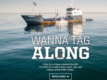 Wanna Tag Along Sweepstakes