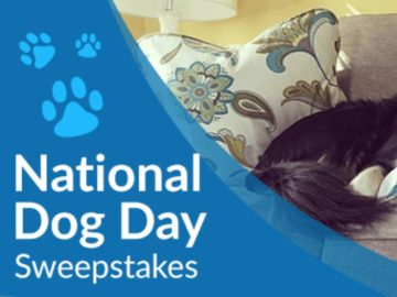 La-Z-Boy National Dog Day Sweepstakes