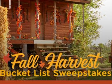 Hallmark Channel's Fall Harvest Bucket List Pinterest Sweepstakes