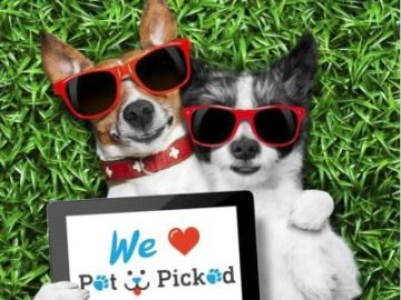 Pet Picked – Win a Year of Dog Food!