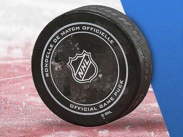 Travel Nation Hockey Trip Sweepstakes