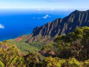 Plantsnap Hawaii Giveaway