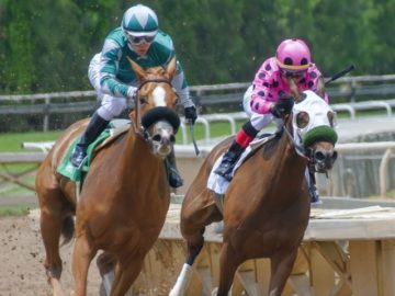 2019 Angry Orchard Kentucky Derby National Sweepstakes