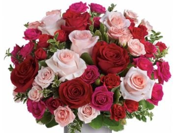 Milford Valley Mother's Day Roses Contest