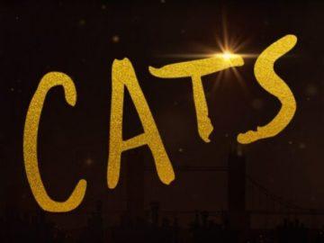 Cats Fanalert Sweepstakes