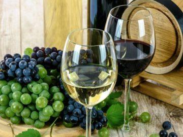 Wine Enthusiast Lodi Old Vine Sweepstakes