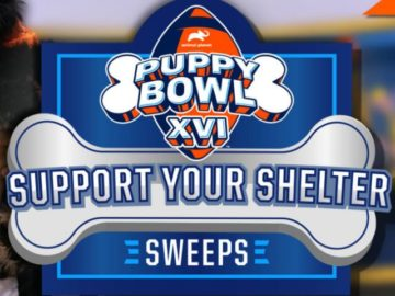 Animal Planet Support Your Shelter Sweepstakes