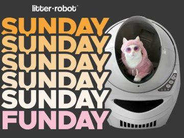 Win a Litter-Robot