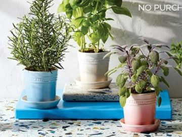 Everything Kitchens Le Creuset Herb Planter Giveaway
