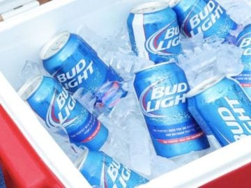 Bud Light Ultimate Backyard Viewing Party Package Sweepstakes