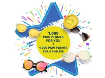 Paw Points June Instant Win Game