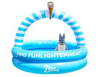 Blue Bunny Pool Giveaway