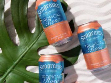 Seagram's Escapes Pool Float Giveaway